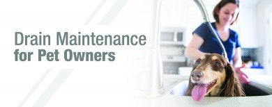 Drain Maintenance for Pet Owners