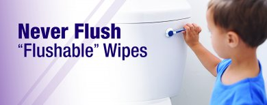 "Never Flush ""Flushable"" Wipes"